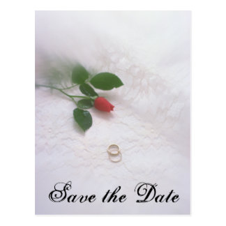 Save the Date - Wedding Rings Post Card