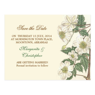 save the date white flowers elegant postcards