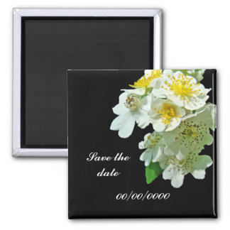 Save the Date White Multiflora Roses Wildflower Square Magnet