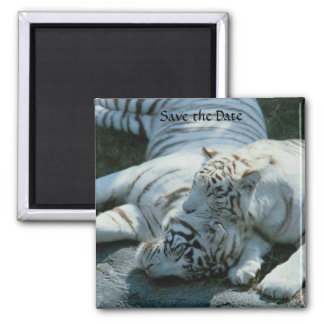 Save the Date White Tiger Magnets