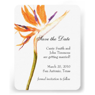 Save the Date with Bird of Paradise Invites