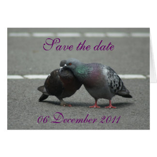 save the date with pigeons card