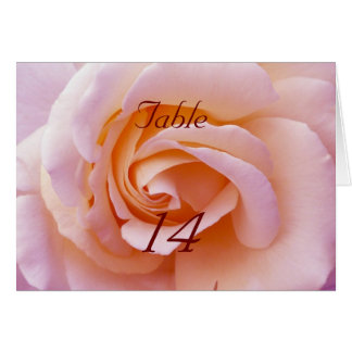 Save the date with Pink and Peach Garden Rose Greeting Card