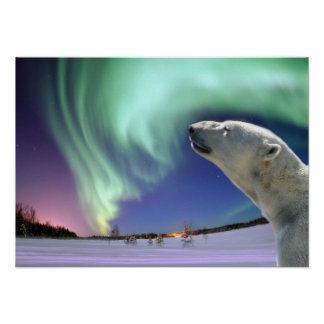 Save the Endangered Polar Bears Poster