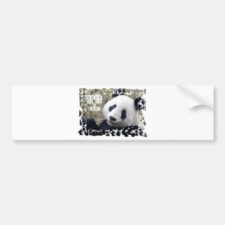 Save The Giant Panda Bumper Sticker