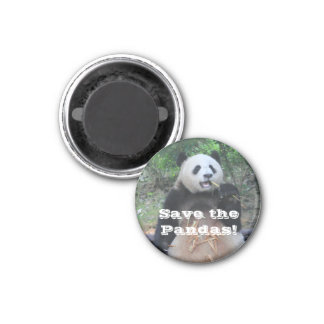 Save the Giant Pandas Magnet