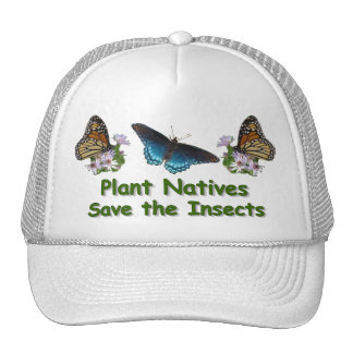 Save the Insects Hat
