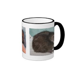 save the kiwis!!! ringer mug