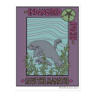 Save The Manatee Postcard