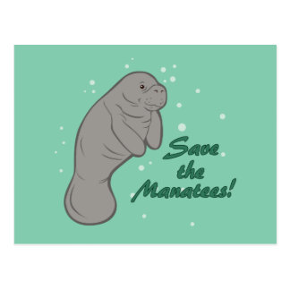 Save the Manatees! Postcard