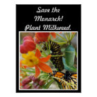 Save the Monarch Poster