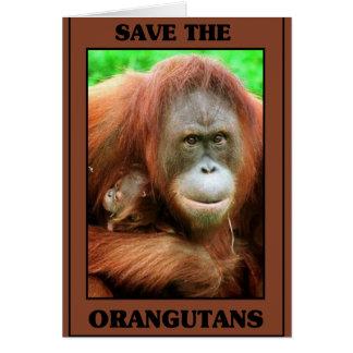 Save the Orangutans Card