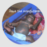 Save the Orangutans Cute Baby Round Stickers