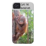 Save the Orangutans orphan Uttuh