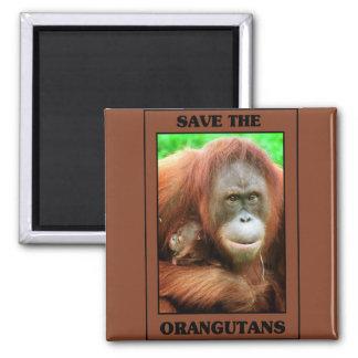 Save the Orangutans Square Magnet