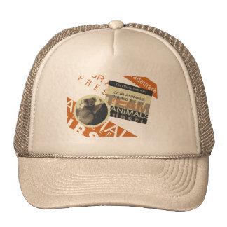 Save the Pandas Tshirts and Gifts Mesh Hats