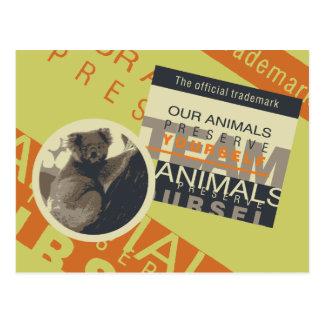 Save the Pandas Tshirts and Gifts Postcard