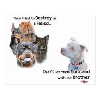 Save the Pitbull Postcard