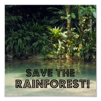 Save the Rainforest Print