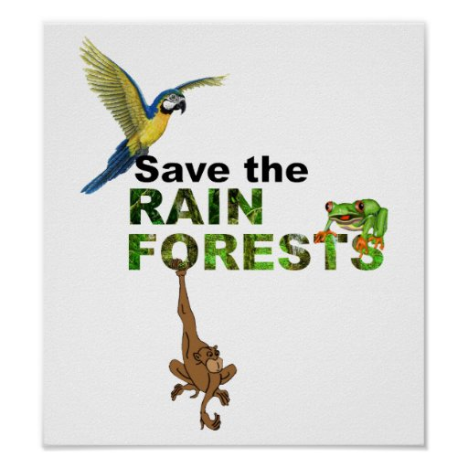Save the Rainforests Poster