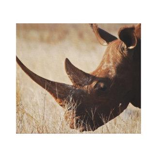 Save the Rhino Canvas Prints
