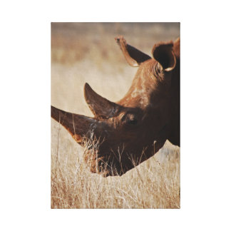 Save the Rhino Canvas Prints
