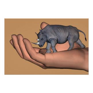 Save The Rhinos !