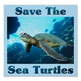 Save the Sea Turtles Poster