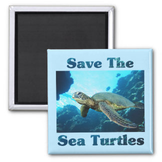 Save the Sea Turtles Square Magnet