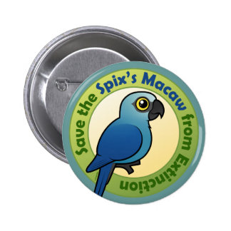 Save the Spix's Macaw from Extinction 6 Cm Round Badge