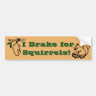 Save the Squirrels! Deter Tailgaters! Bumper Sticker