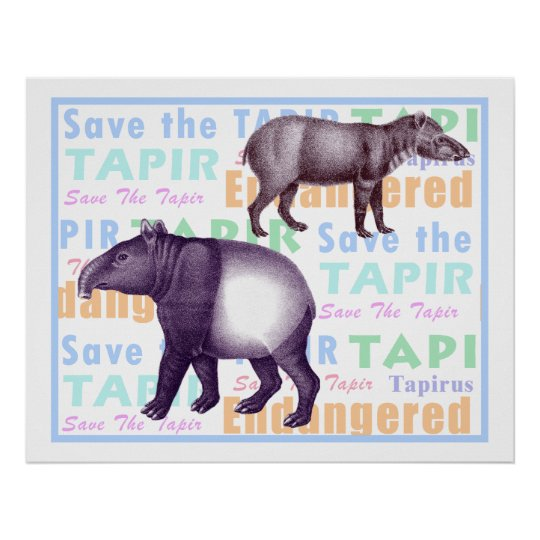 Save the Tapir Poster - American & Asian Tapirs