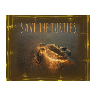 Save the Turtles Wood Wall Art