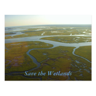 Save the Wetlands Postcard