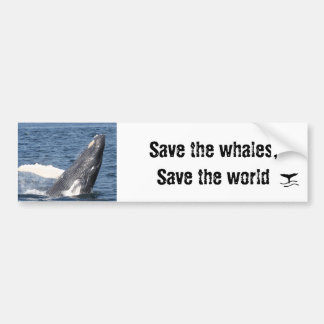 Save the whales, Save the world Bumper Sticker
