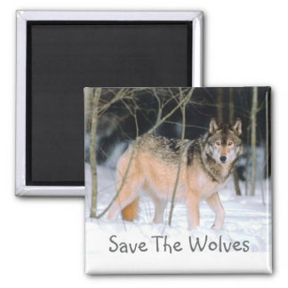 SAVE THE WOLVES SQUARE MAGNET