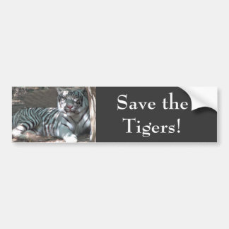 Save Tigers Bumper Sticker