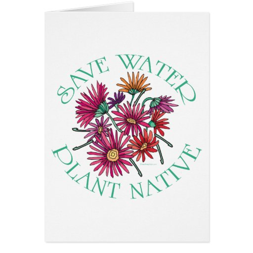 Save Water - Plant Native Greeting Cards