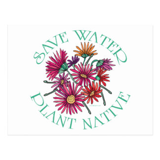 Save Water - Plant Native Postcard