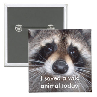 Saved a wild animal - raccoon 15 cm square badge