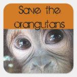Saving Orangutans Square Stickers