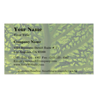 Savoy cabbage leaf pack of standard business cards