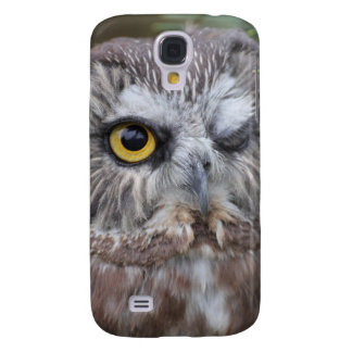 Saw-whet Owl Galaxy S4 Case