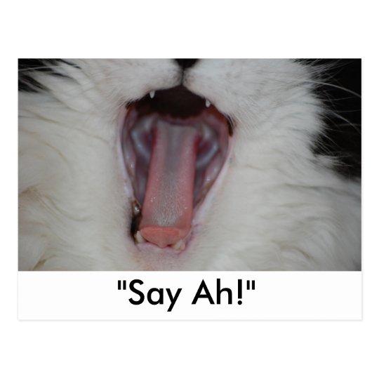 Say Ah!/Dentist Humour Postcard