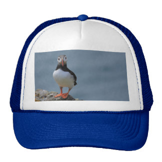 Say Cheese Puffin Hat