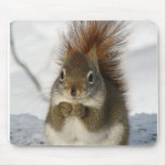Say Grace Mouse Pad