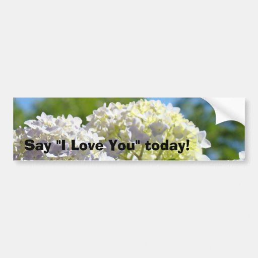 Say I Love You today! bumper stickers Hydrangeas