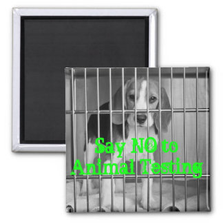 """Say No to Animal Testing"" Beagle magnet"