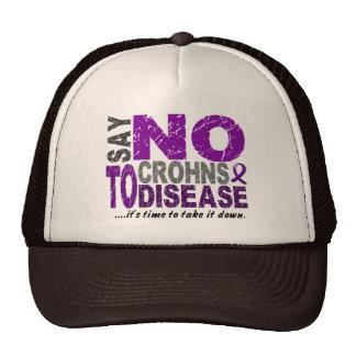 Say NO To Crohns Disease 1 Hats