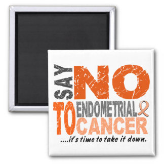 Say NO To Endometrial Cancer 1 Square Magnet